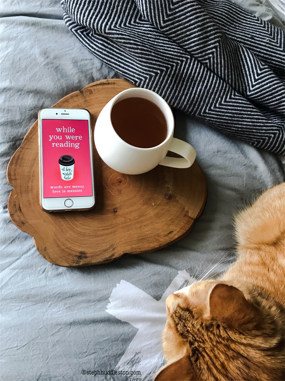Ginger cat cuddles up next to 'While you were reading' book and cup of tea